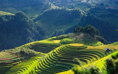 Vietnam über die Probleme der Bürokratie zur Heirat im eigenem Land